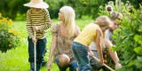 Kako vzgojiti odgovorne, zdrave in srečne otroke